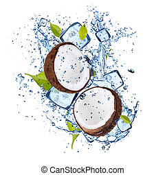 Ice coconuts on white background - Ice coconuts isolated on...
