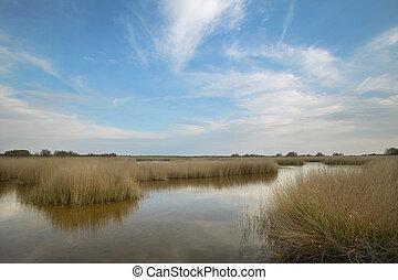 Wetland landscape. Tablas de Daimiel. Ciudad Real. Spain. -...