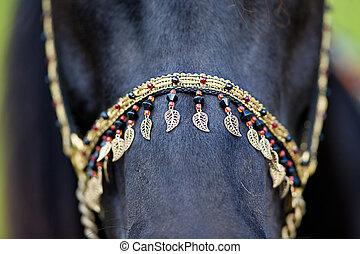 Häst, seldon, svart
