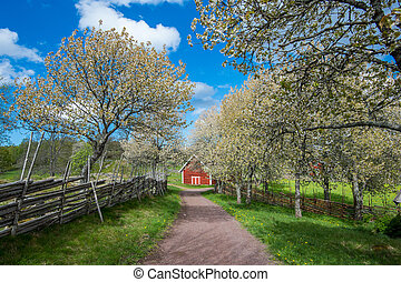 Sweden at springtime - Idyllic Sweden at springtime - a...