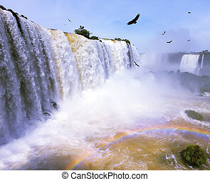 Between a waterfall and a rainbow fly huge Andean condors -...