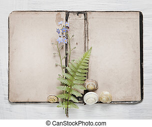 Shabby Chic Background with antique paper and flowers