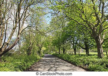 English Country lane