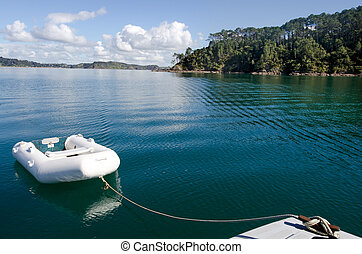 Roberton Island in the Bay of Islands New Zealand - White...