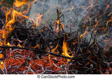 orange fire flames, ashes and smoke - Orange flames of the...