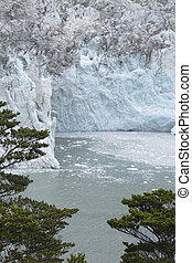 Patagonian landscape with glacier and trees. Argentina.