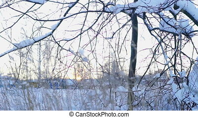 Sunset above field covered by snow