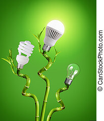 light bulb on bamboo - Conceptual image of - tungsten bulb,...