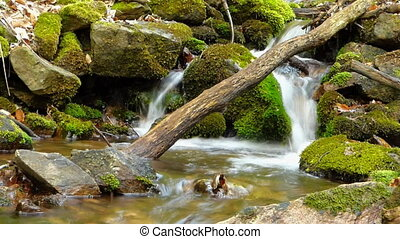 Small creek in forest in slow motion blur