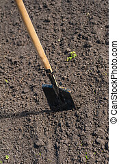 toil work of ground spade insert soil