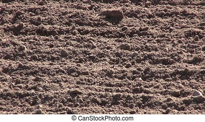 autumn time farm field soil after cultivation