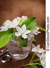 spring flowers still life