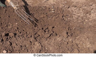 digs flower bed soil in garden with pitchfork