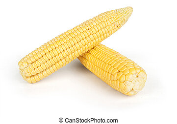 Ear of Corn on a white