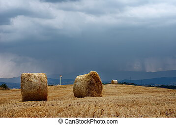 Straw and moody sky - Straw bales in a field under moody sky