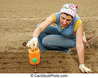 watering and sowing