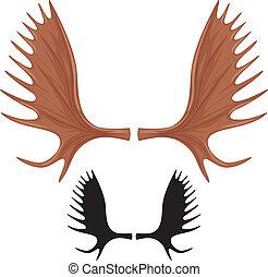 horns of moose, moose antlers