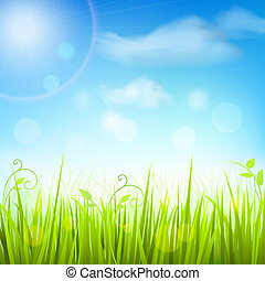 Spring meadow grass blue sky poster - Fresh green spring...