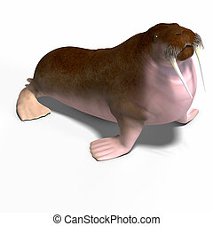 Walrus - Walsrus with mustache and tusk with Clipping Path