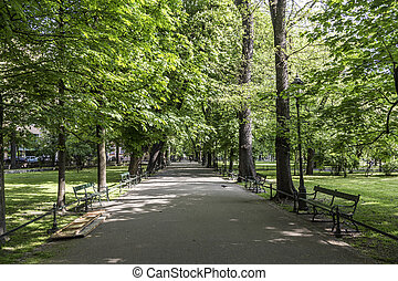 parc Planty in Krakow, Poland - parc Planty wit green trees...