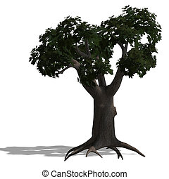 loardleaf - 3D Render of a loardleaf tree with shadow and...