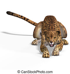 Big Cat Cheetaah - Dangerous Big Cat Cheetaah With Clipping...