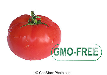 Tomato gmo-free stamp i solated on white