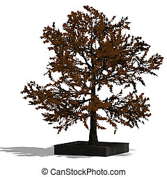 3D Render of a needle beam Tree - 3D Render of a bradleaf...