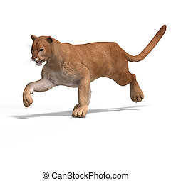 Big Cat Puma - Dangerous Big Cat Puma With Clipping Path...