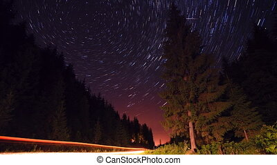 Star trails in the forest timelapse