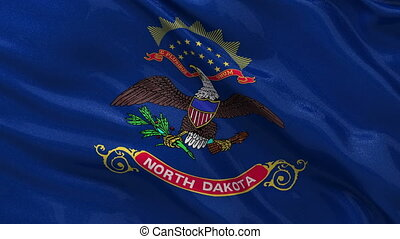 US state flag of North Dakota loop