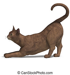 cat - rendering of a cat with Clipping Path and shadow over...