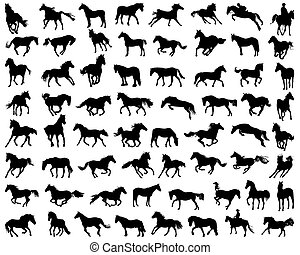 horses - Big set of black silhouettes of horses, vector