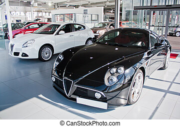 Car dealership in europe finance and transport