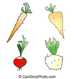 Root Vegetables - Childish Illustration Isolated Root...