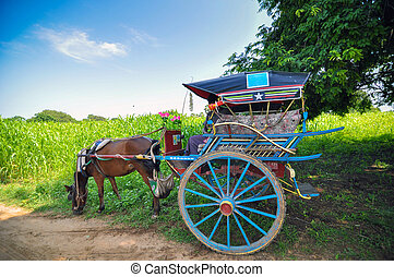 Horse carriage in Bagan, Myanmar - The horse carriage in...