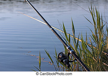 fishing rod on silent lake's coast