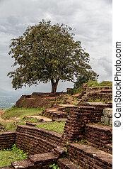 Sigiriya,  matale,  Sri, roca,  Lanka, fortaleza