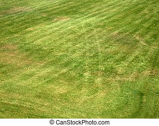 grass - Just a beautifully cut field of summer grass Perfect...