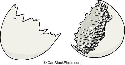 Empty Eggshell - Empty egg shell halves over white...