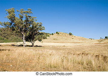 Rural Scene - A rural scene, near Mudgee, New South Wales,...