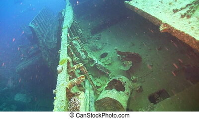 Shipwreck on the Seabed, Red Sea