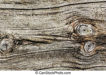 Old Weathered Plank - Photograph of old, weathered, rotten...