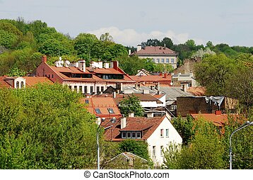 Vilnius city roofs and trees at spring time