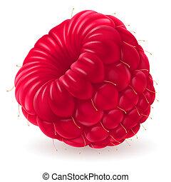 Appetizing fresh raspberry - Apperizing fresh raspberry...