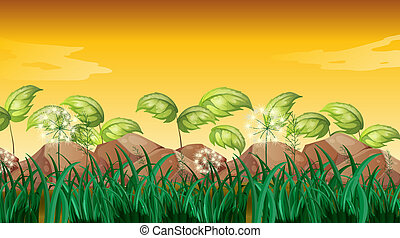 Grasses near the big rocks - Illustration of the grasses...