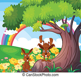 Playful wild animals under the big tree