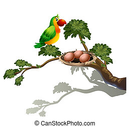 A parrot and a nest - Illustration of a parrot and a nest on...