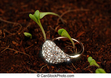 Gold Ring with Cubic Zirconia (CZ) on the Ground with Green...