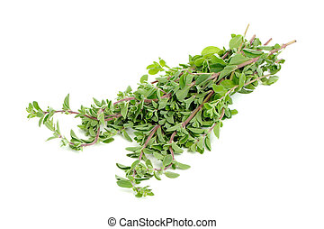 Bunch of Marjoram Herb Isolated on White Background - A...